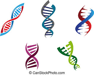 Cartoon illustration of colourful DNA strands with their coiled helical structure of genetic nucleotides , five different variants