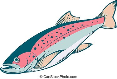 Vector image of a colourful line trout