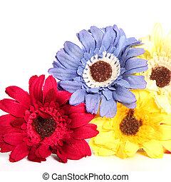 Colourful ornamental flowers