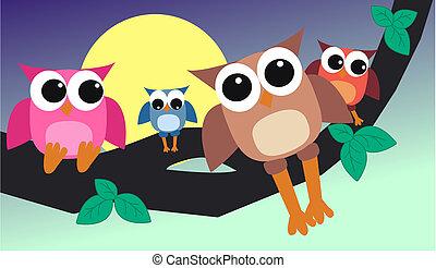 colourful owl family