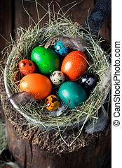 Colourfull Easter eggs on old wooden stump