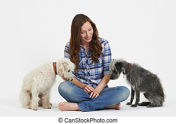 colpo studio, di, donna, con, due, coccolare, lurcher, cani