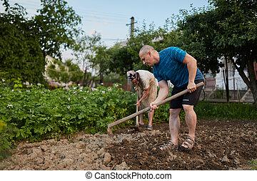 coltivatori, vecchio, madre, figlio