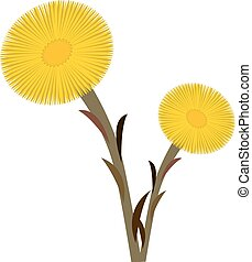 coltsfoot, double, art, agrafe