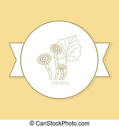 Coltsfoot medicine plant, yellow label design in circle shape and flat shadow. Vector illustration