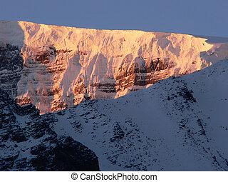 Columbia Icefield Dawn