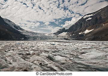 columbia, icefield, -, jasper parco nazionale, -, alberta, -, canada