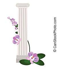 colunas gregas ionic, ordem, vindima, desenho, vetorial, ilustração