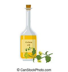 Colza oil in bottle and oilseed rape flowers. Decanter with ...