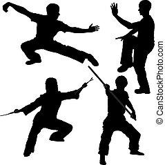 combattente, silhouette, kung fu