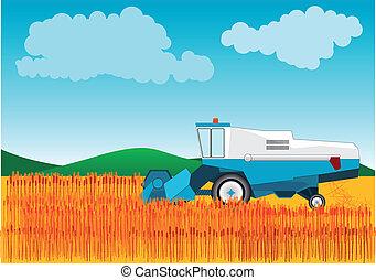 Combine - Blue combine is cutting wheat.