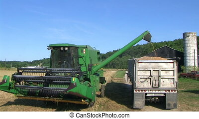 Combine Emptying Wheat 03 - Combine emptying wheat and...