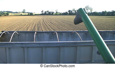Combine Emptying Wheat - Wheat emptying out of combine into...