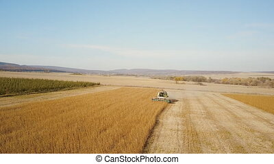 combine harvester collects soybean - Harvester collects...