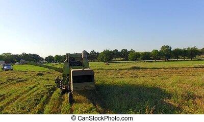 Combine Harvester Cutting Field