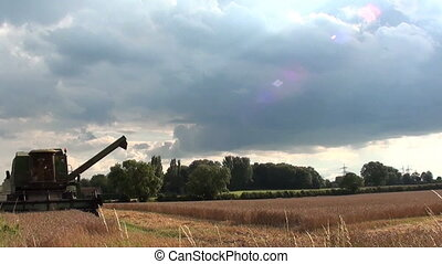 combine harvester cutting wheat