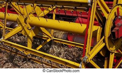 Combine harvester harvest ripe wheat. - Agricultural combine...