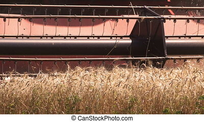 Combine harvester harvesting a field of wheat - Closeup of...