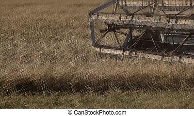 Combine harvester. Harvesting. - Harvesting. Rotor harvester...