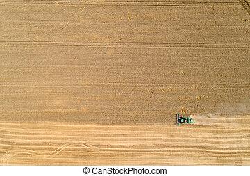 Combine harvester harvesting golden wheat