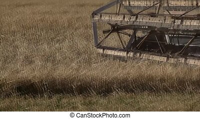 Combine harvester. Harvesting.