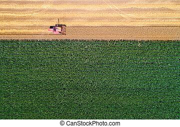 Combine harvester in wheat field - Top view of combine...