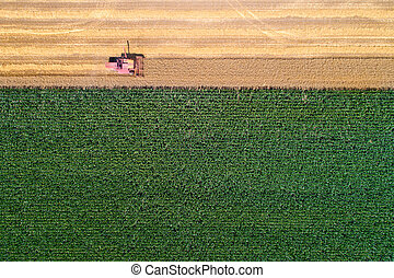 Combine harvester in wheat field - Top view of combine...