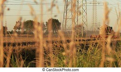 Combine harvester on grainfield