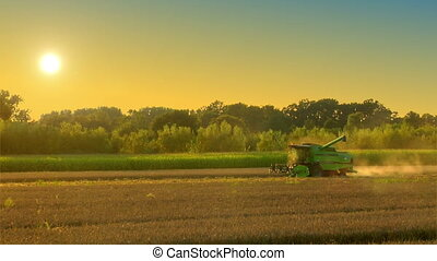combine harvester on rye field