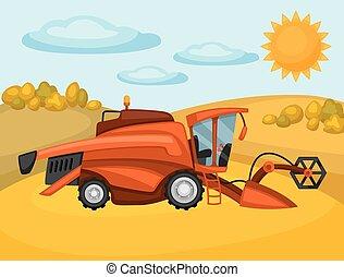 Combine harvester on wheat field. Agricultural illustration farm rural landscape
