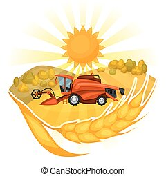 Combine harvester on wheat field. Agricultural illustration farm rural landscape