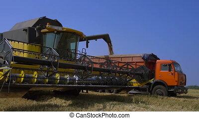 Combine-harvester unload grain - Combine-harvester unloads...