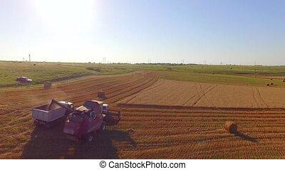 Combine Harvester Unloading Grain Into Trailer