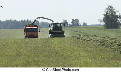 Combine harvester unloading herb in tractor tow while...
