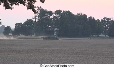 combine harvester work in wheat grain field light in sunset....