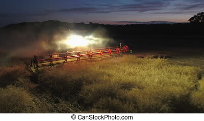 Combine Harvester Working at Night During the Summer Harvest...