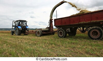 Combine harvester working at summer field
