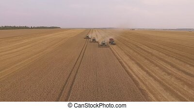 Combine Harvester Working in a Field at Sunset