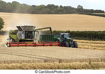 Combine harvester working in a field of wheat - England