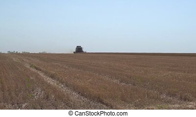 Combine Harvester working in the field - Combine harvester...