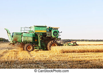 Combine harvester working on wheat field.