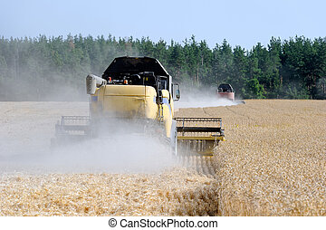 Combine harvesters working on a wheat field