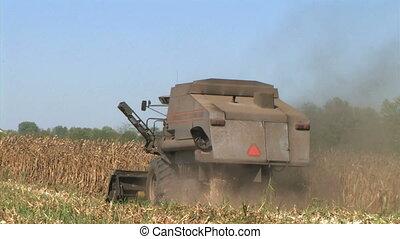 Combine Harvesting Corn 07 - Combine harvesting corn crop.