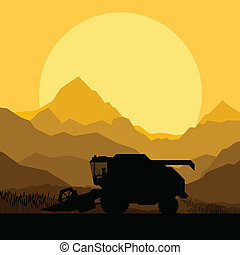 Combine harvesting crop in grain fields vector
