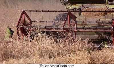 Combine harvesting dry grass. Close up. Combine is riding,...