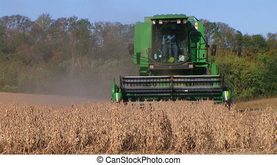 Combine Harvesting Soybeans 06 - Farmer combining soybean...