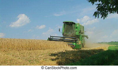 Combine Harvesting Wheat 07