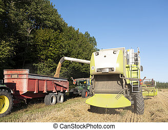 combine loads grain into cart during harvest in the north of france