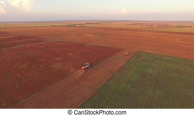 Combine Moving At Golden Field While Harvesting