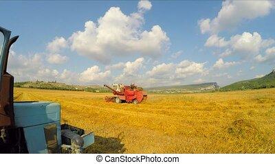 Combine Mowing Grains At Picturesque Lane